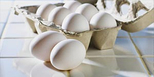 Raw Eggs: Are They Edible? Find Out the Truth About Raw Eggs